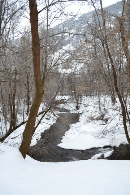 wintertime creek